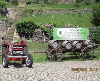 850 Jahre Weinbau Sachsen