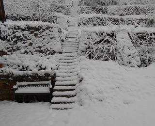 Weinberg versinkt in winterlicher Pracht!